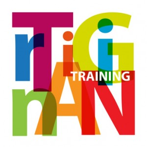 Training for youth work