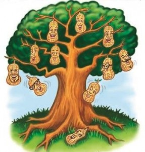 Who's Up Your Family Tree? Youth resource, pastoral
